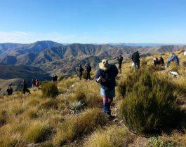 NZ wilding conifer management group – April 2016
