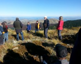 NZ wilding conifer management group – April 2016